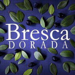 Бреска Дорада